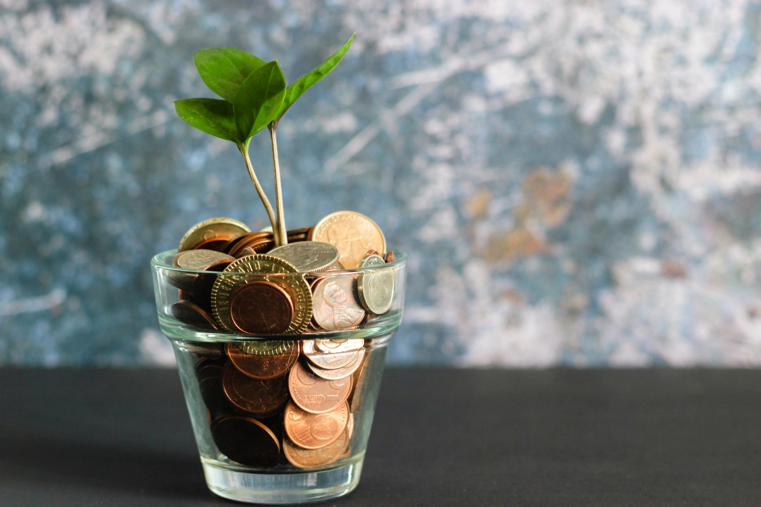 The Bottom Line: Five Questions to Ask about the Cost of eGiving